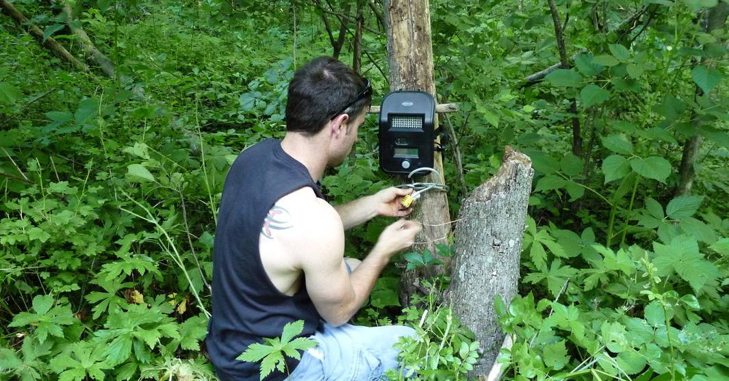 10 trail camera tips for better results