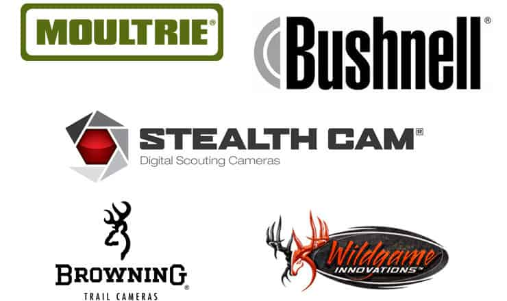 Best Trail Camera Brands – Reviews and Comparison