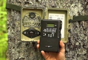 how-to-set-up-and-use-a-trail-camera