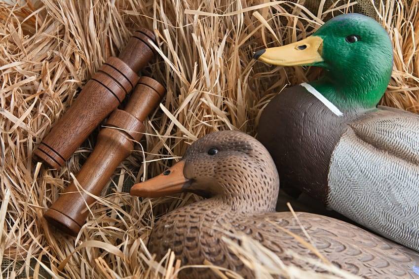 Duck hunting tips- decoys and duck calls