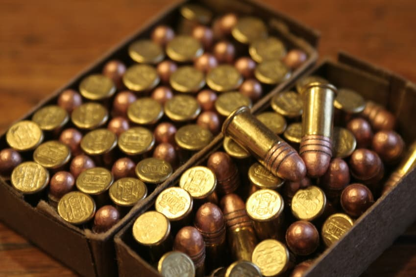 small game ammo, .22 cal ammo