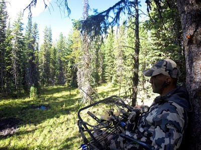 A Beginners Guide on How to Hunt from a Tree stand