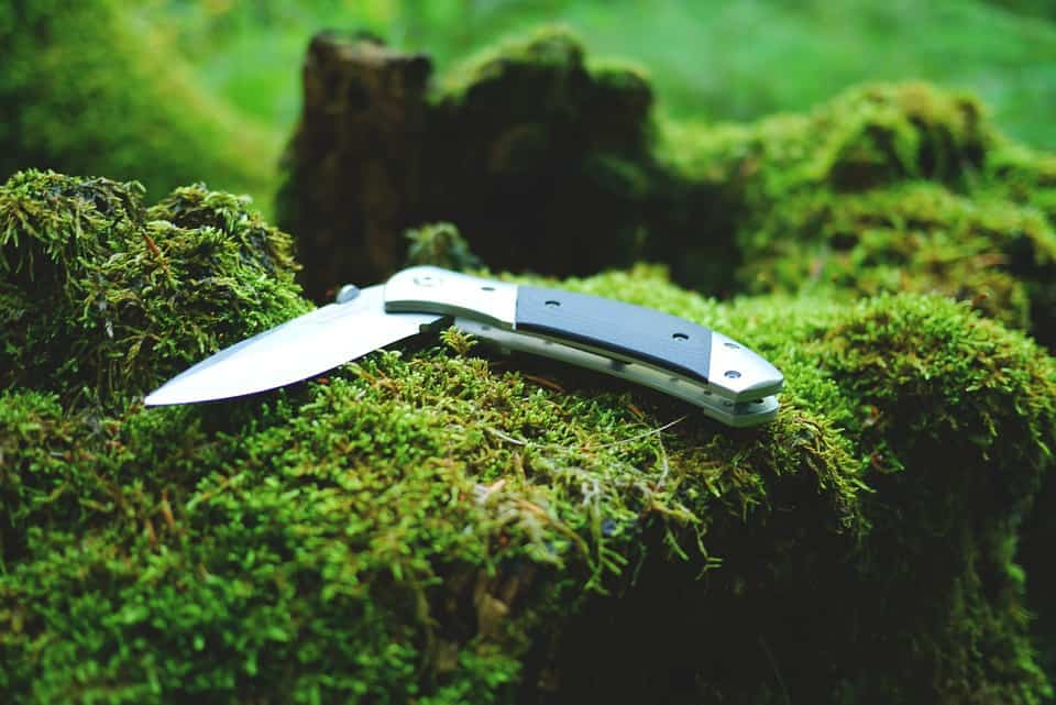 Photo of a folding knife in the forest