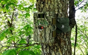 trail camera design