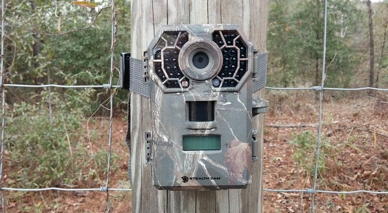 Best Deer Trail Cameras – Reviews and Guide