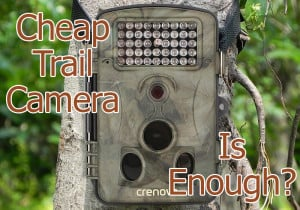 is the best cheap trail camera good enough