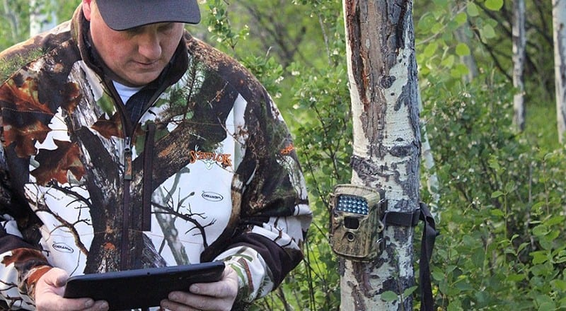 How To Set Up & Use A Trail Camera