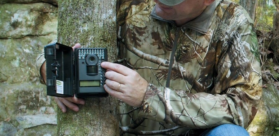 10 Trail Camera Tips to Help You Get The Best Results