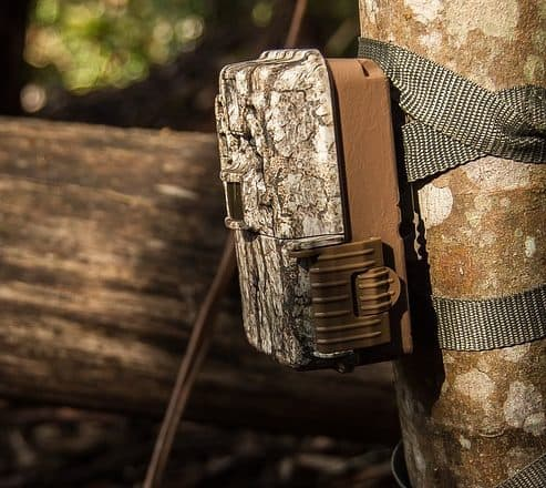 How To Use a Trail Camera