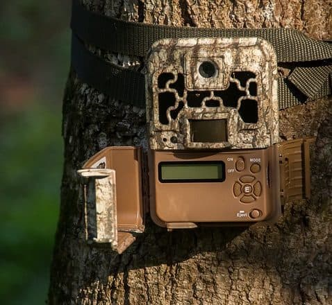 Checklist For Trail Camera Scouting